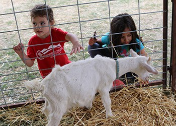 Kids Delight in 2018 Baby Animal Days, April 19-29